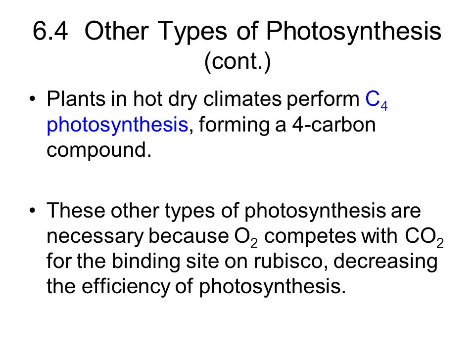 6.4 Other Types of Photosynthesis (cont.)