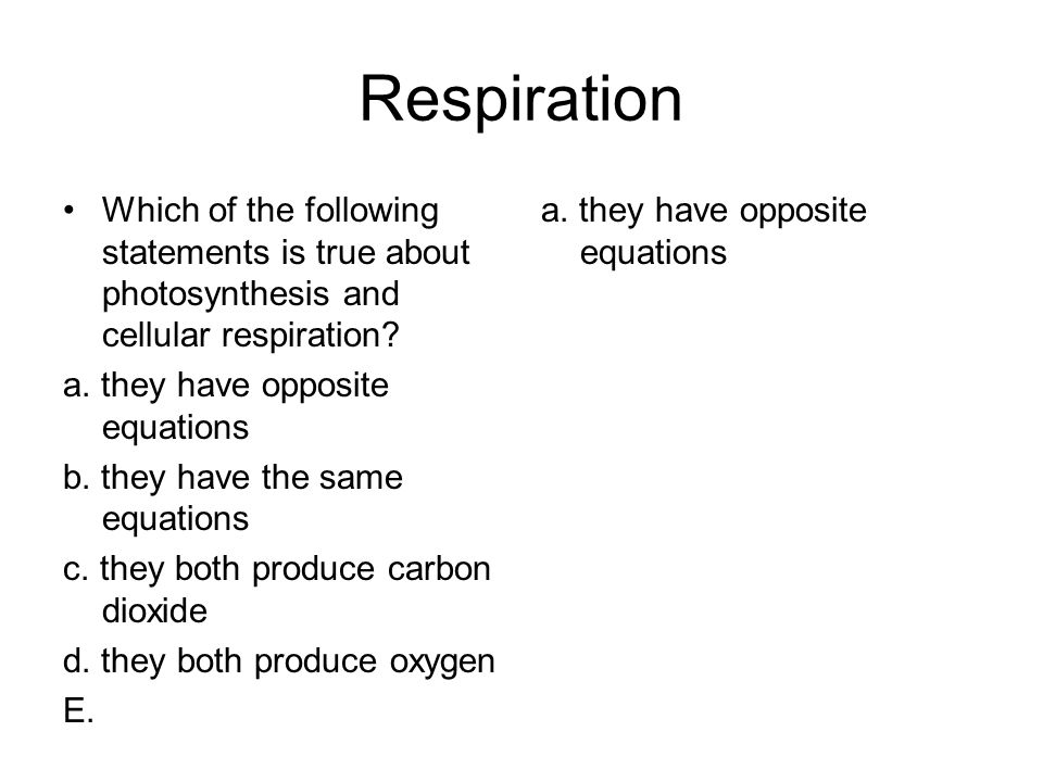 Respiration Which of the following statements is true about photosynthesis and cellular respiration