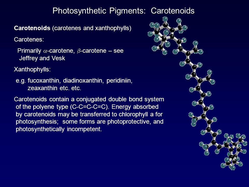 Photosynthetic Pigments: Carotenoids
