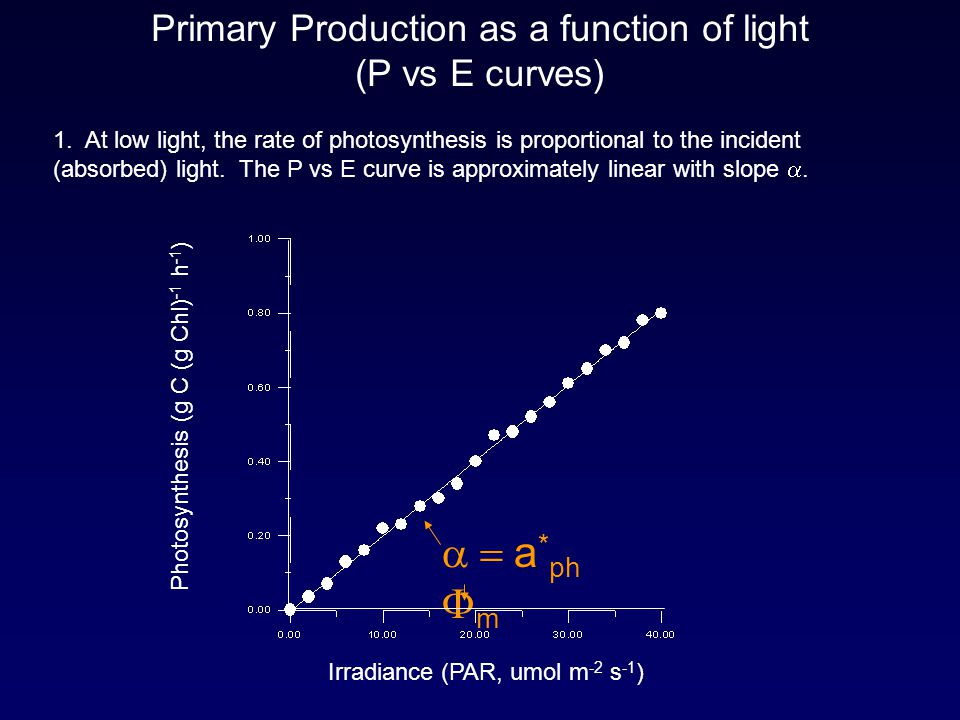 Primary Production as a function of light