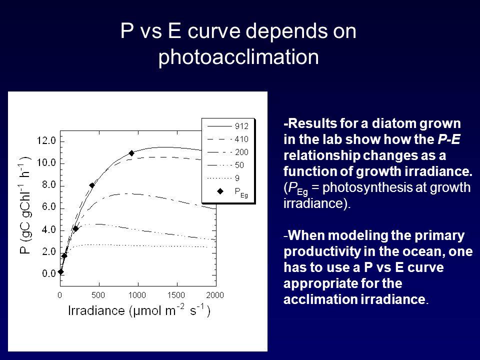 P vs E curve depends on photoacclimation