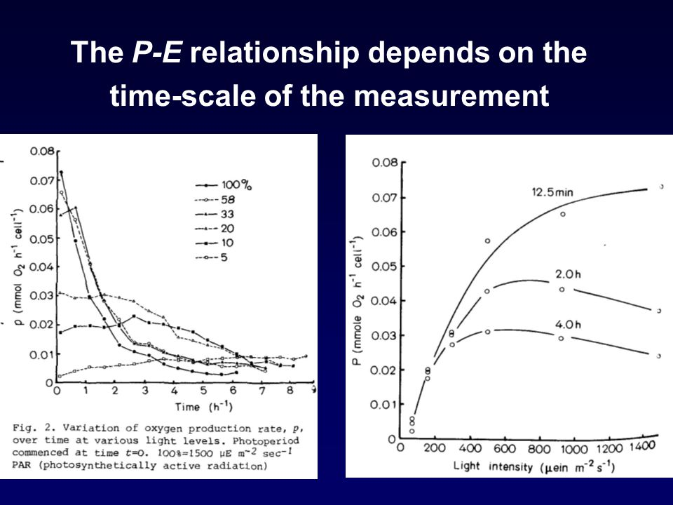 The P-E relationship depends on the time-scale of the measurement