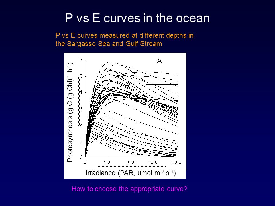 P vs E curves in the ocean