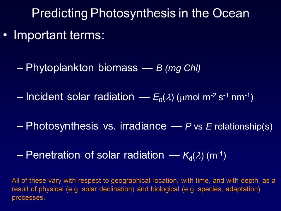 Predicting Photosynthesis in the Ocean