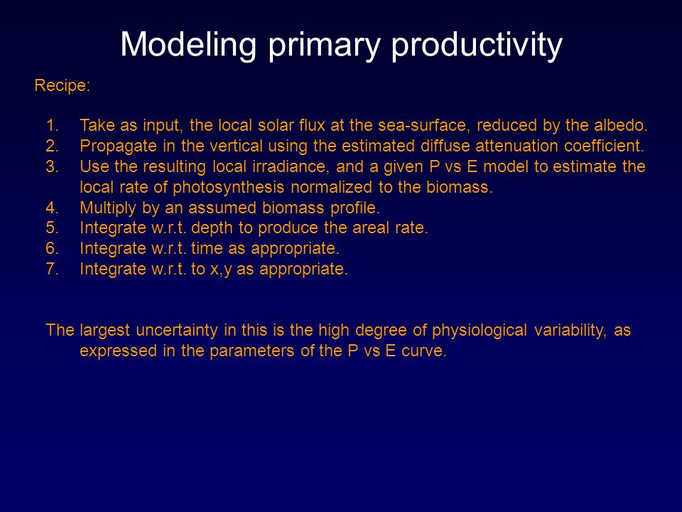 Modeling primary productivity