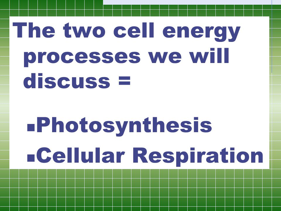 The two cell energy processes we will discuss =