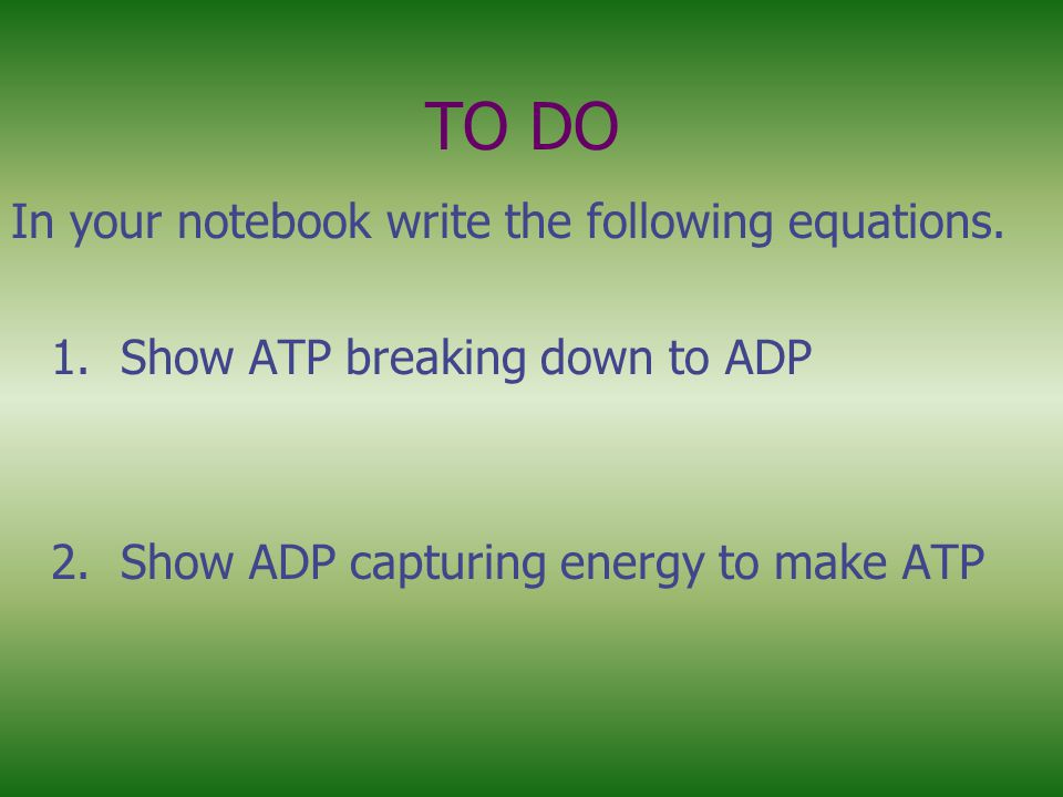 TO DO In your notebook write the following equations.