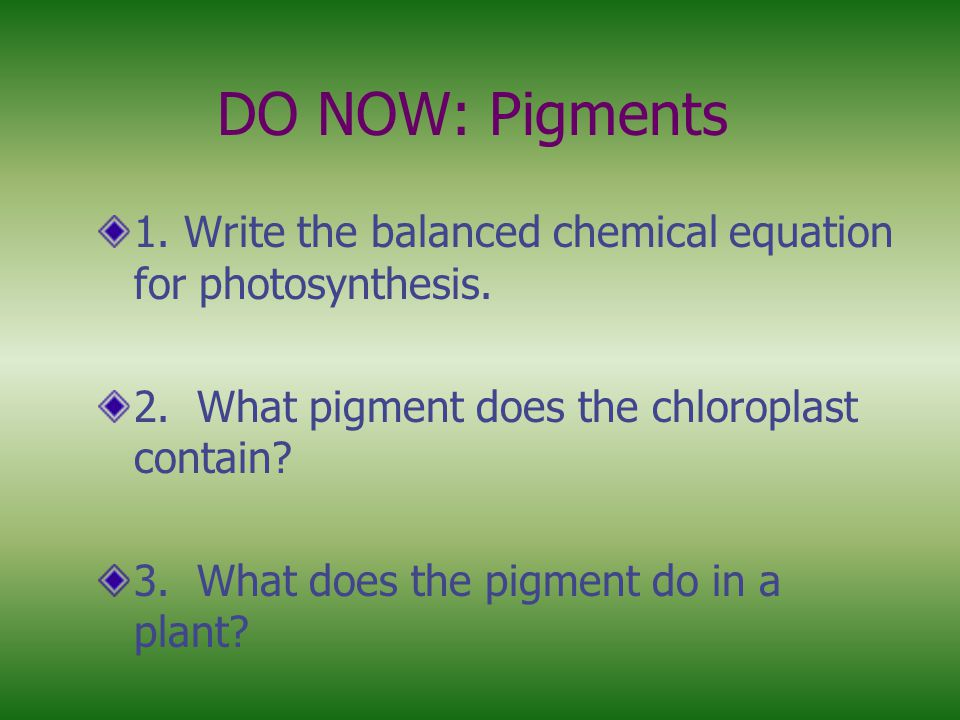 DO NOW: Pigments 1. Write the balanced chemical equation for photosynthesis. 2. What pigment does the chloroplast contain