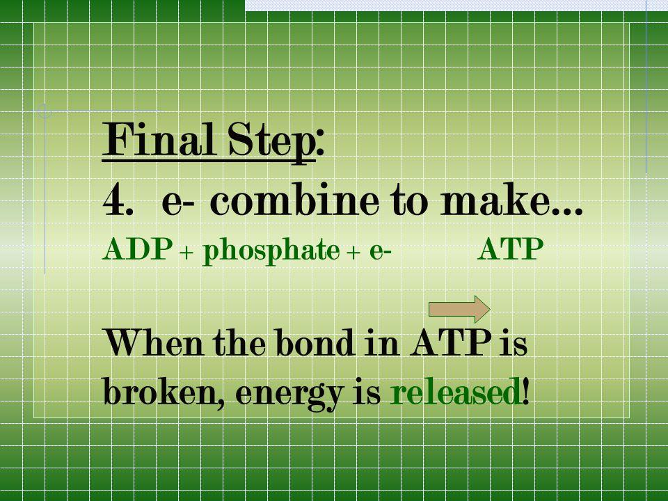 Final Step: 4.