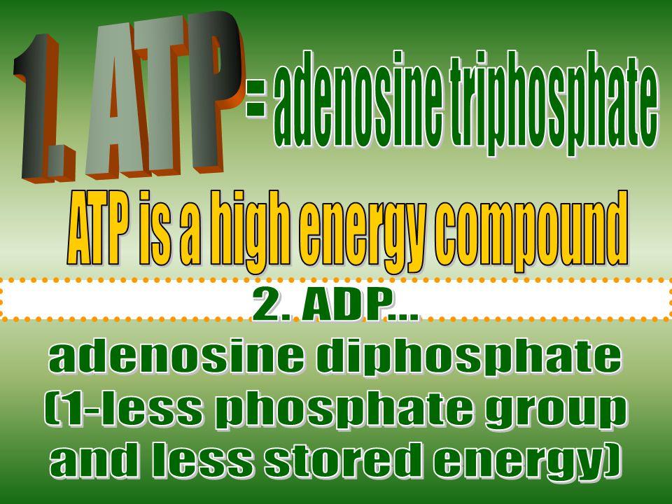 = adenosine triphosphate