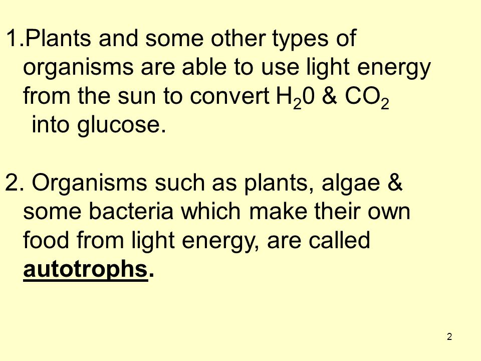Plants and some other types of organisms are able to use light energy from the sun to convert H20 & CO2