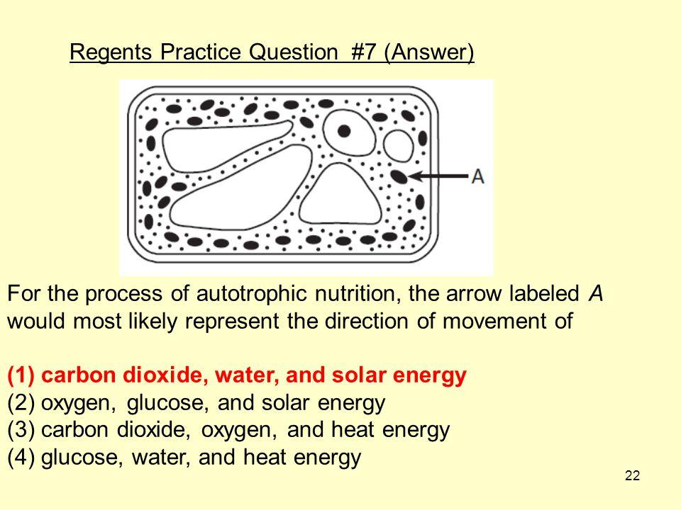 Regents Practice Question #7 (Answer)
