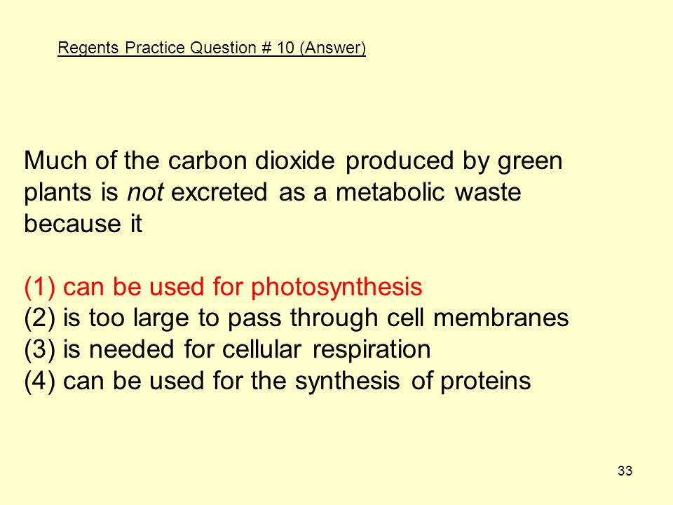 (1) can be used for photosynthesis