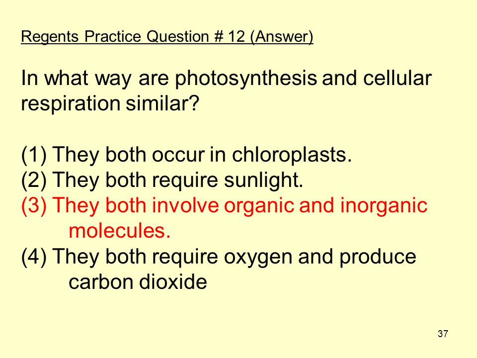 In what way are photosynthesis and cellular respiration similar
