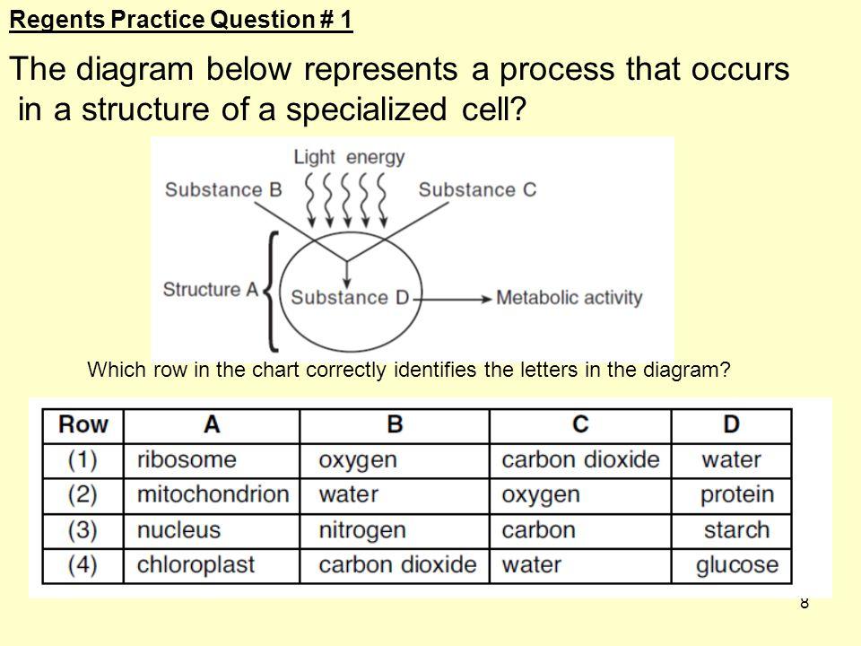 The diagram below represents a process that occurs
