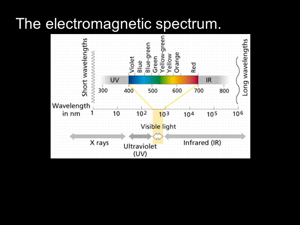 The electromagnetic spectrum.
