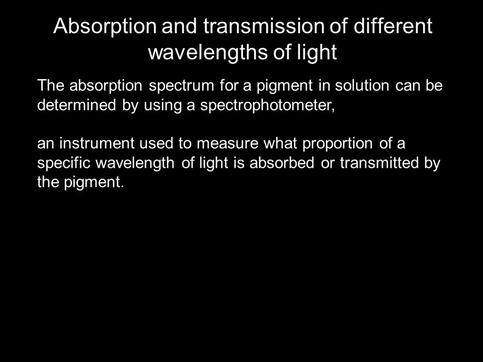 Absorption and transmission of different wavelengths of light