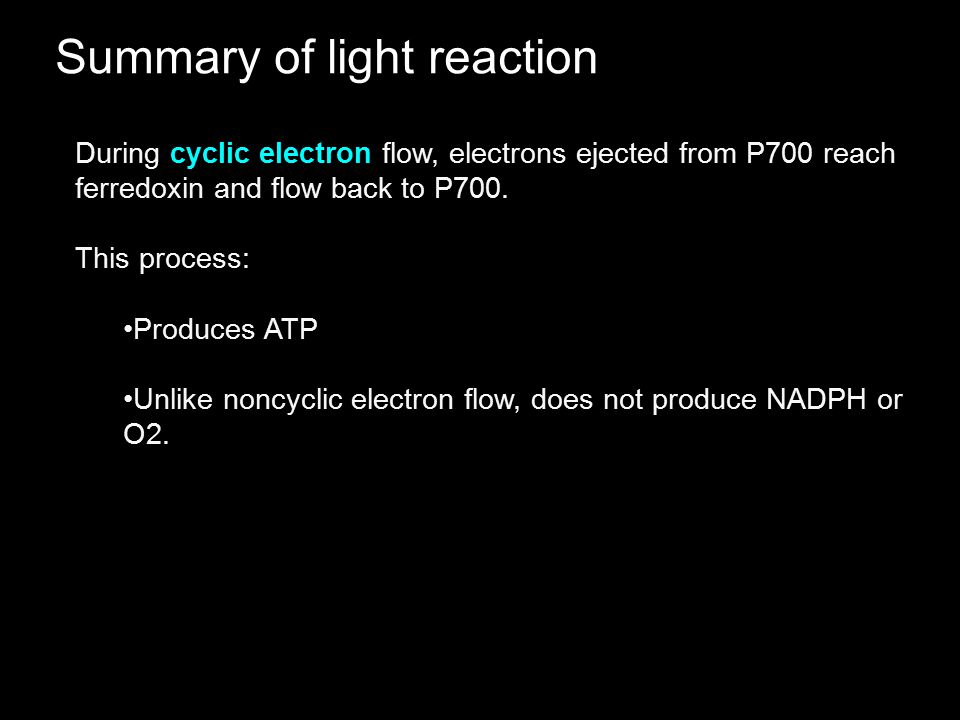 Summary of light reaction