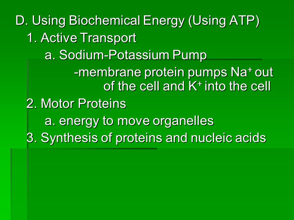 D. Using Biochemical Energy (Using ATP)