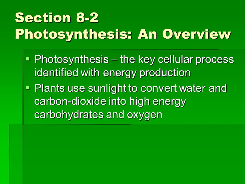 Section 8-2 Photosynthesis: An Overview