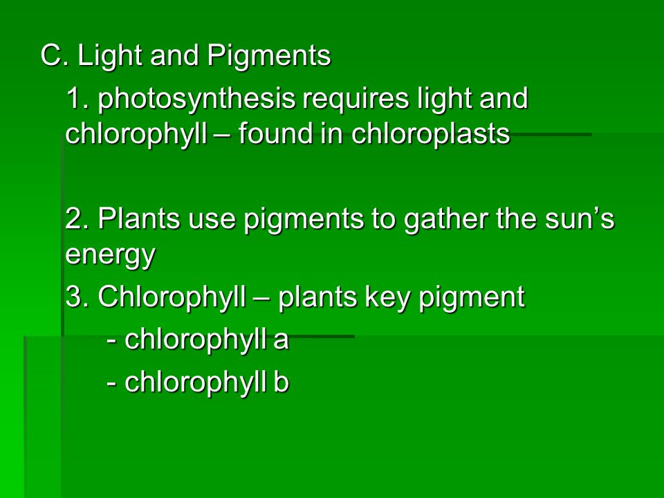 C. Light and Pigments 1. photosynthesis requires light and chlorophyll – found in chloroplasts. 2. Plants use pigments to gather the sun's energy.