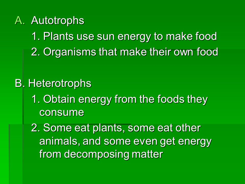 Autotrophs 1. Plants use sun energy to make food. 2. Organisms that make their own food. B. Heterotrophs.