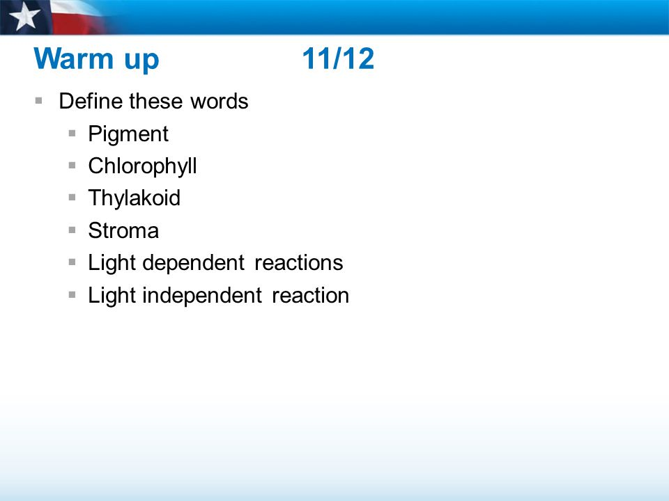 Warm up 11/12 Define these words Pigment Chlorophyll Thylakoid Stroma