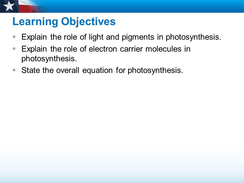 Learning Objectives Explain the role of light and pigments in photosynthesis. Explain the role of electron carrier molecules in photosynthesis.