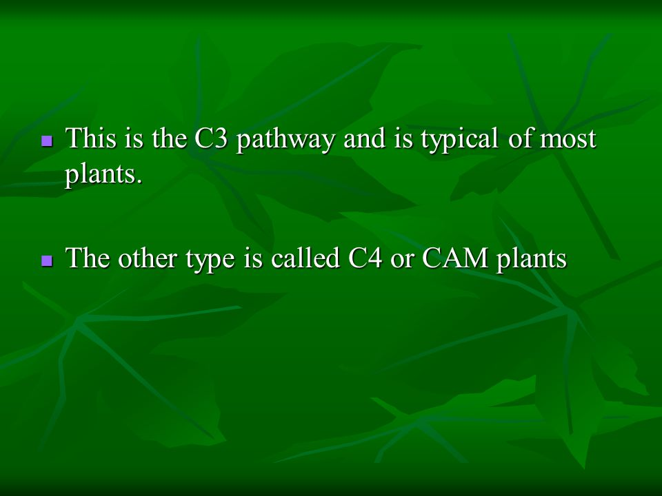 This is the C3 pathway and is typical of most plants.