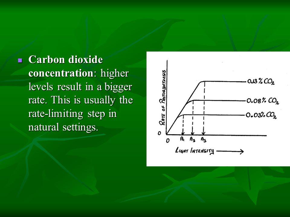 Carbon dioxide concentration: higher levels result in a bigger rate