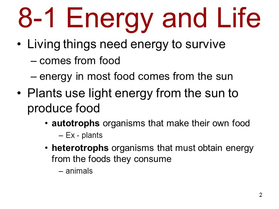 8-1 Energy and Life Living things need energy to survive