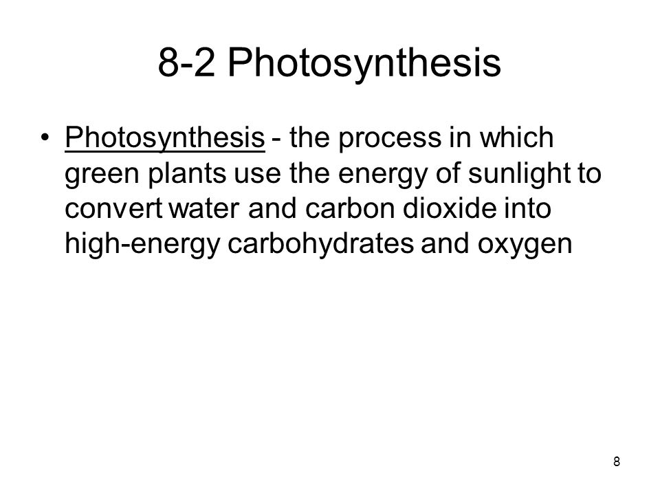 8-2 Photosynthesis