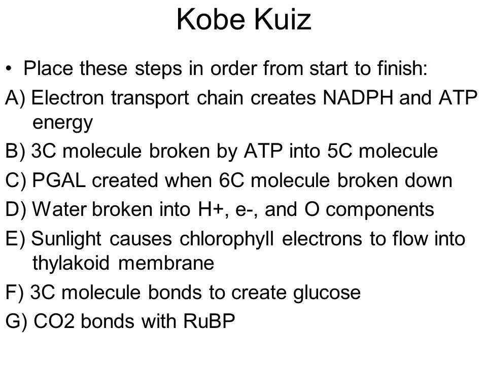 Kobe Kuiz Place these steps in order from start to finish: