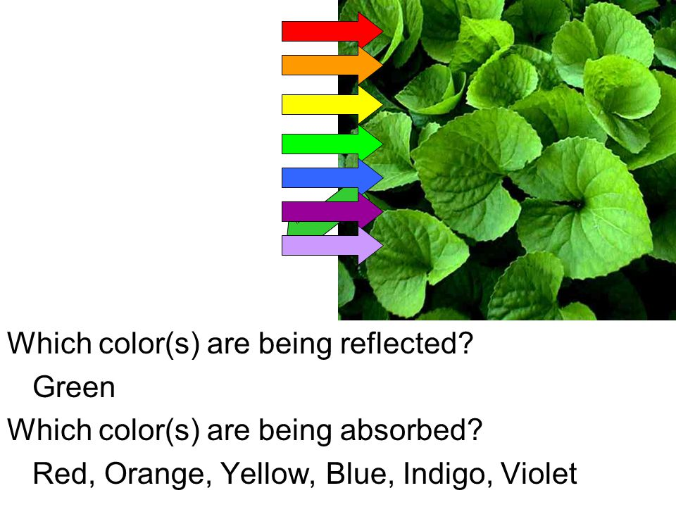Which color(s) are being reflected