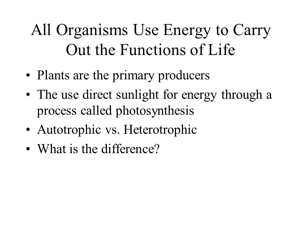 All Organisms Use Energy to Carry Out the Functions of Life