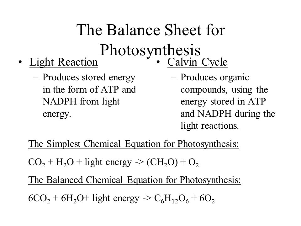 The Balance Sheet for Photosynthesis