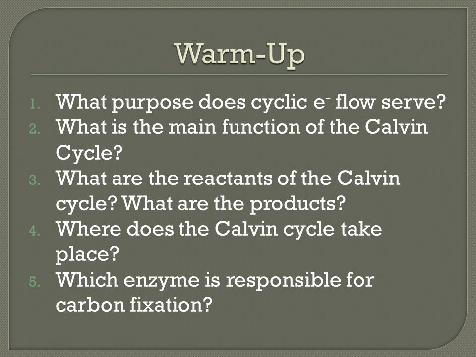 Warm-Up What purpose does cyclic e- flow serve