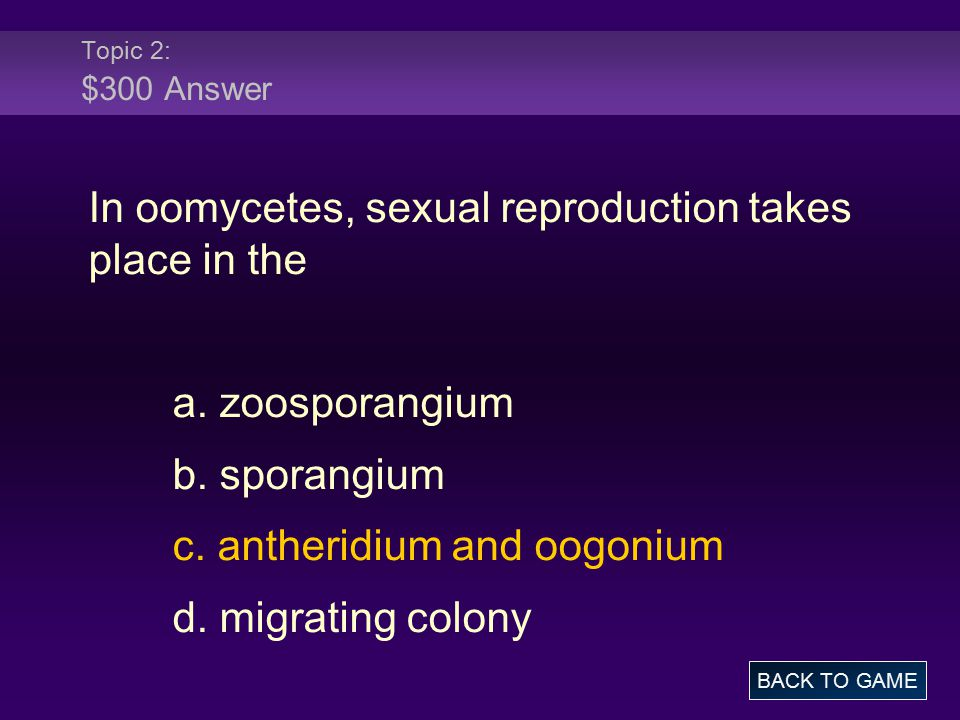 In oomycetes, sexual reproduction takes place in the