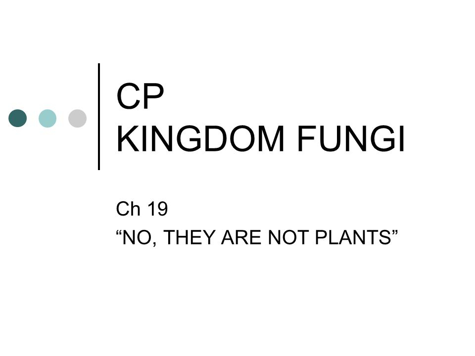 Ch 19 NO, THEY ARE NOT PLANTS