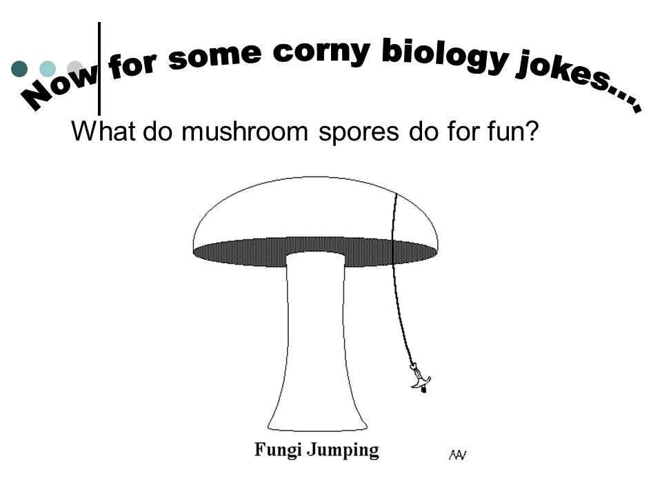 Now for some corny biology jokes….