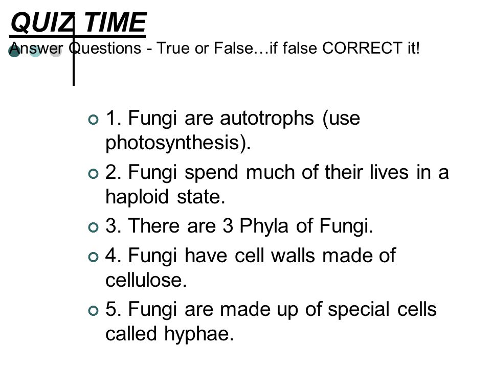QUIZ TIME Answer Questions - True or False…if false CORRECT it!