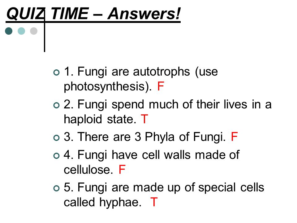 QUIZ TIME – Answers! 1. Fungi are autotrophs (use photosynthesis). F