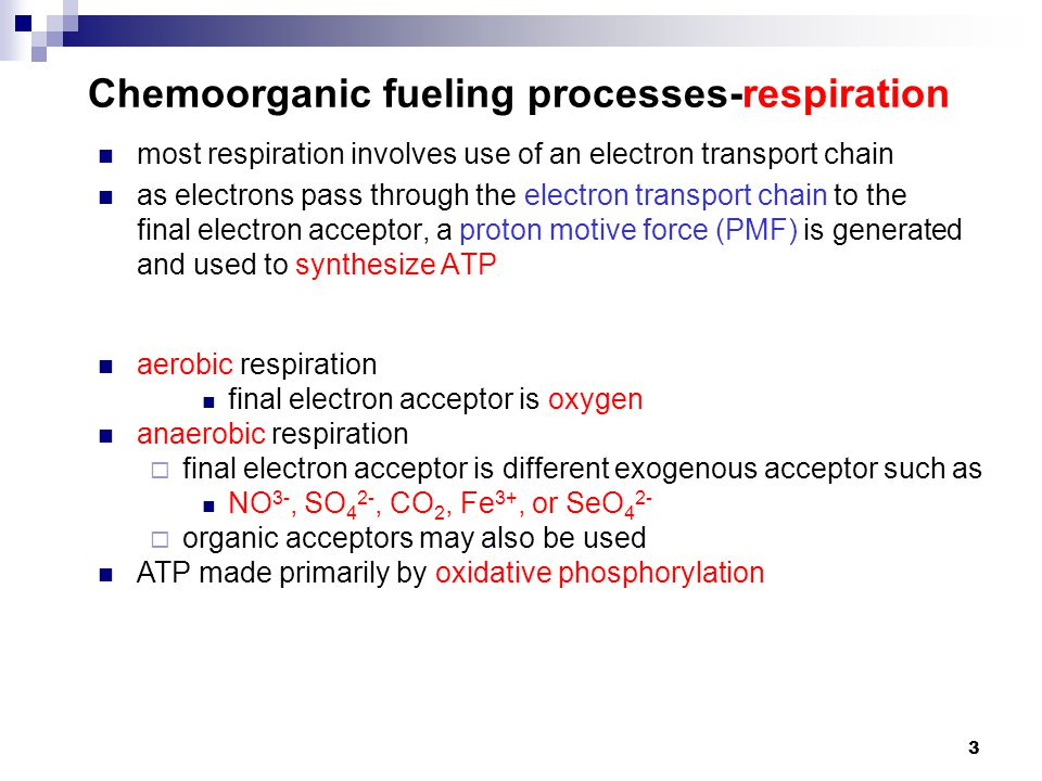 Chemoorganic fueling processes-respiration