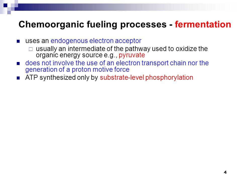 Chemoorganic fueling processes - fermentation