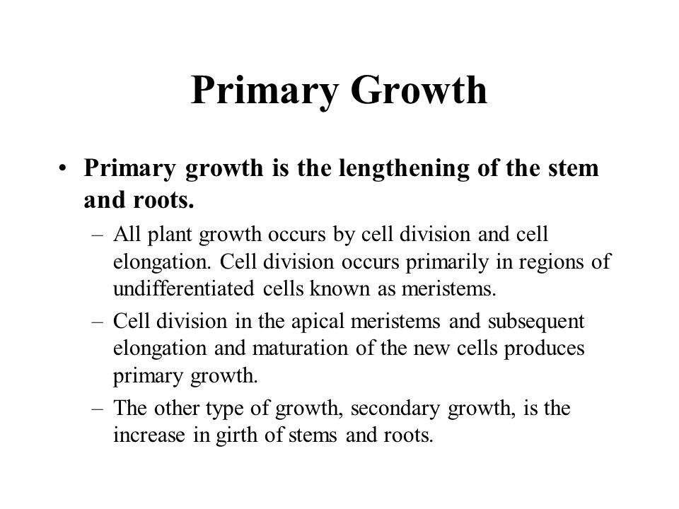 Primary Growth Primary growth is the lengthening of the stem and roots.