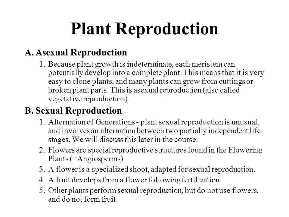 Plant Reproduction Asexual Reproduction Sexual Reproduction