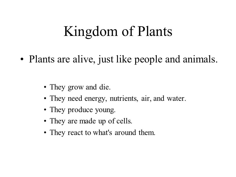 Kingdom of Plants Plants are alive, just like people and animals.