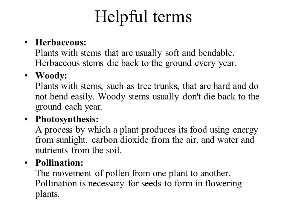 Helpful terms Herbaceous: Plants with stems that are usually soft and bendable. Herbaceous stems die back to the ground every year.