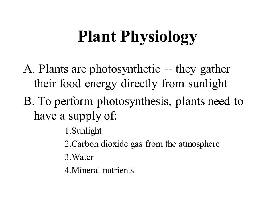Plant Physiology Plants are photosynthetic -- they gather their food energy directly from sunlight.