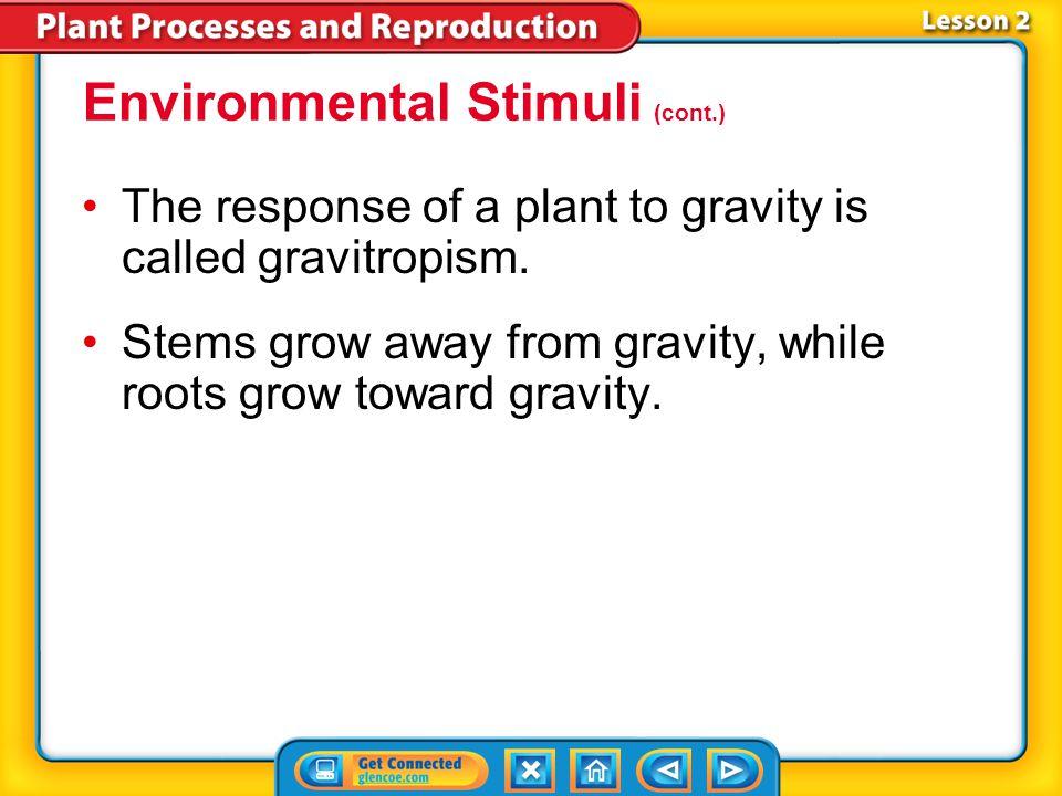Environmental Stimuli (cont.)
